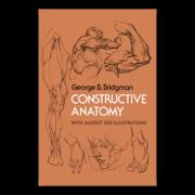 Constructive Anatomy